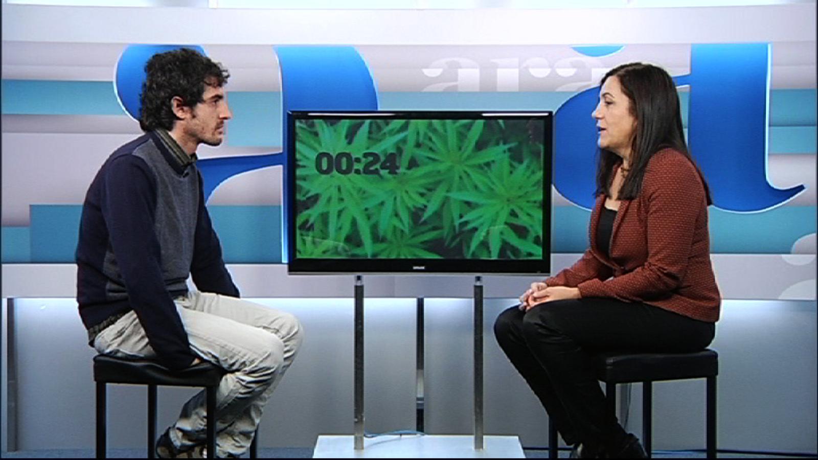 Cara a cara: legalització del cànnabis, sí o no? La perspectiva mèdica i la del consumidor
