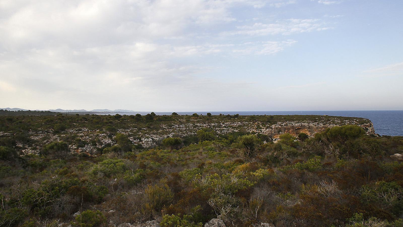 Dos germans britànics acumulen 900 hectàrees de Mallorca