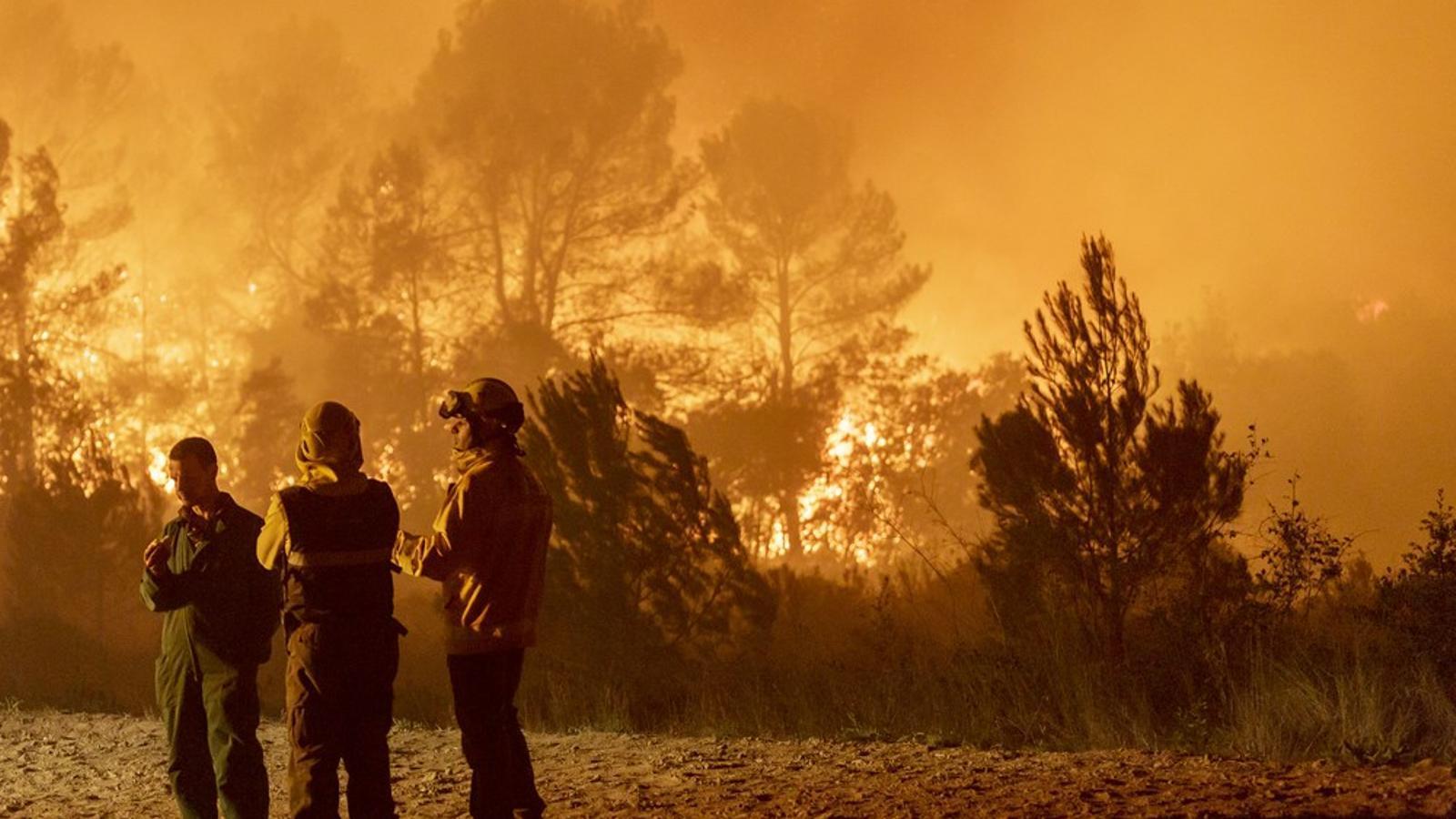 Els bombers treballen en l'incendi del Baix Empordà a Vilopriu / DAVID BORRAT
