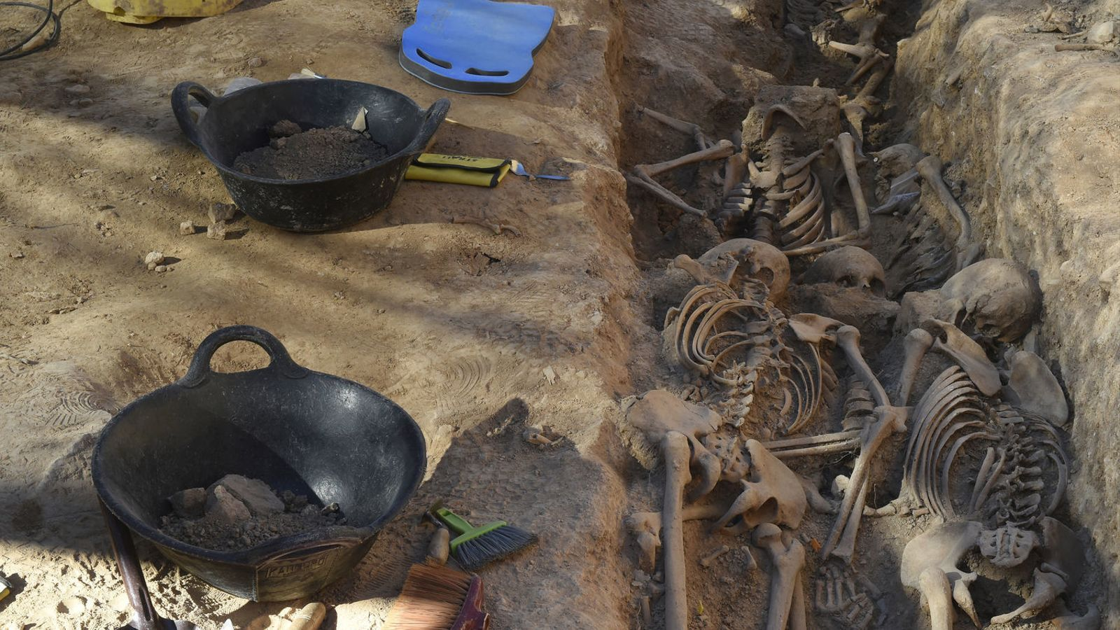 Una de les rases exhumades al vell cementiri d'El Soleràs