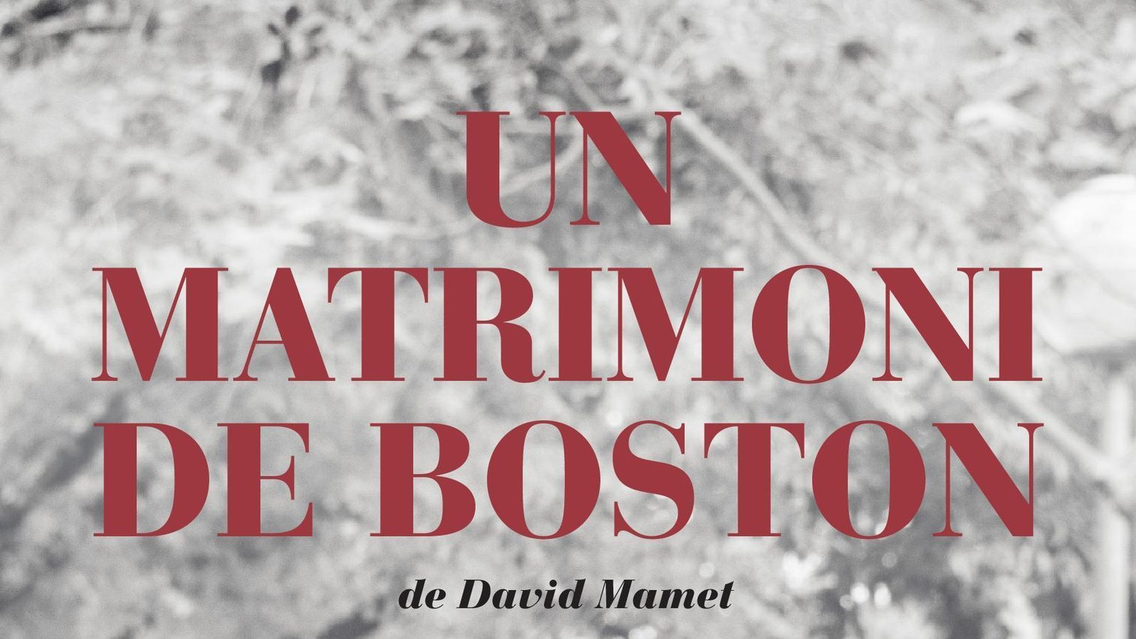 'Un matrimoni de Boston'.