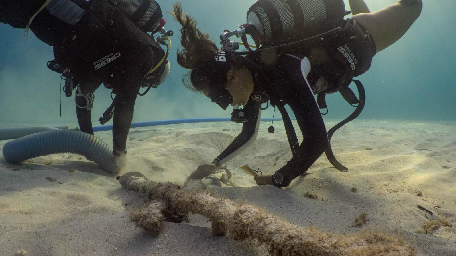 Troben 11 sabres de principis del segle XIX en el fons del mar en es Caló