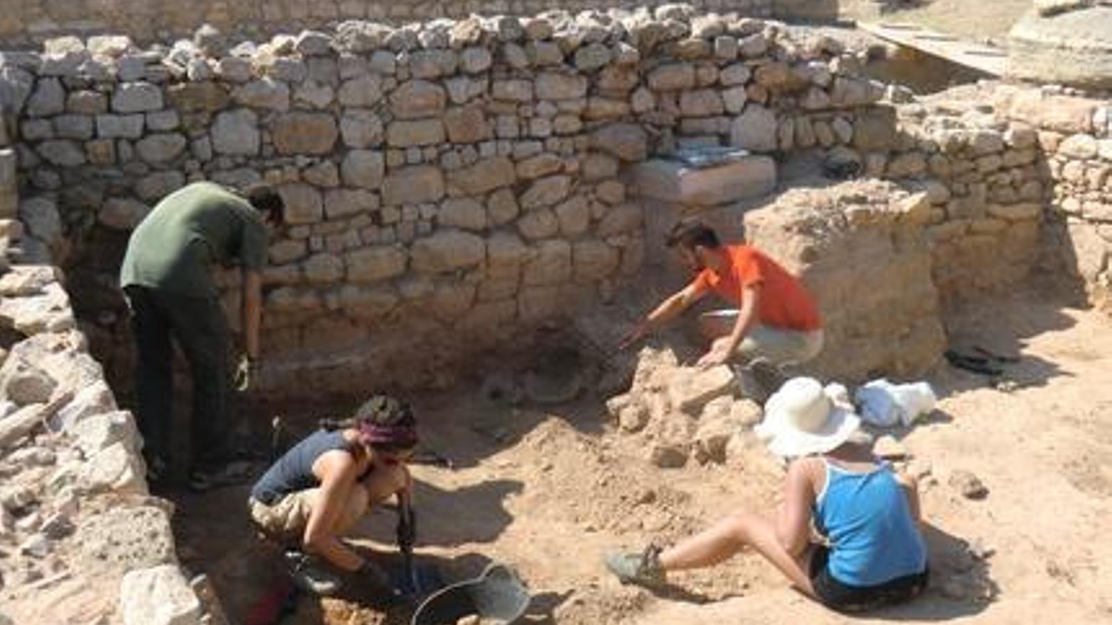 Una imatge de les excavacions d'aquest estiu
