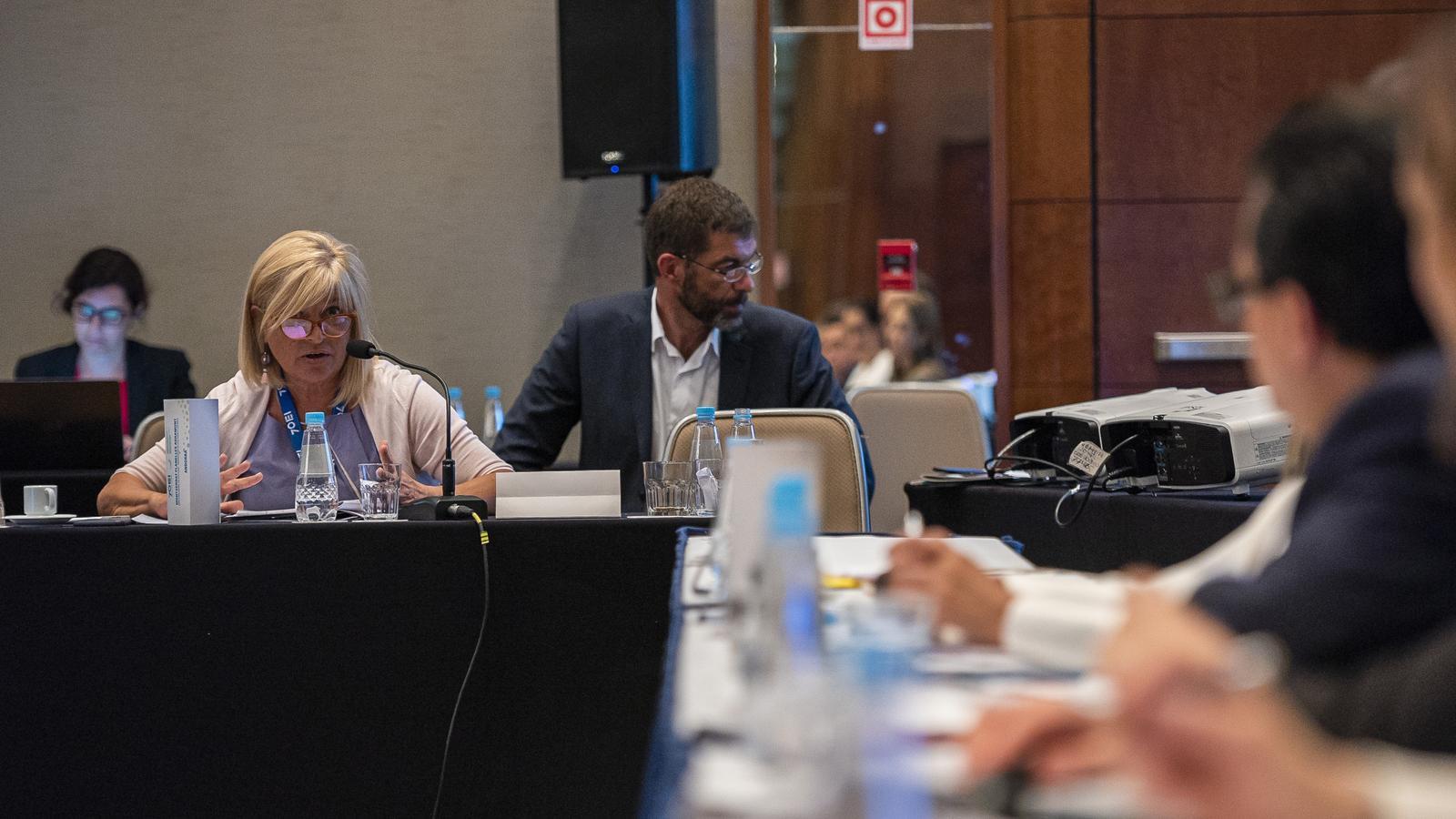 Planelles i Valdés, presents en la Trobada d'Alt Nivell de Representants Ministerials i Institucionals de Cultura d'Iberoamèrica. / SFG