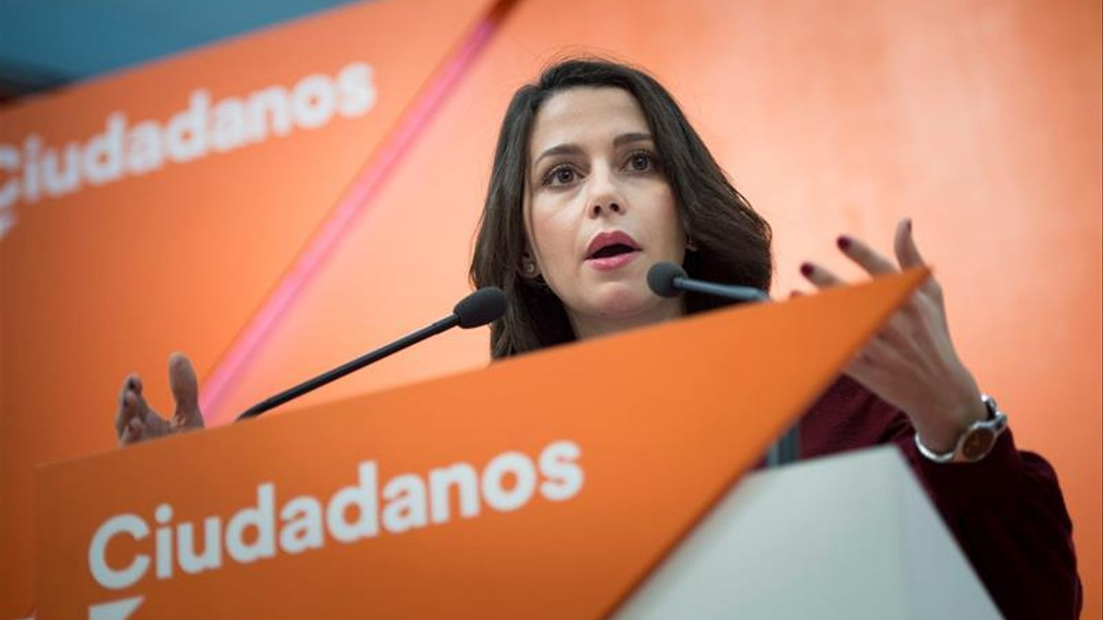 El presumpte agressor  de la Ciutadella nega cap motivació política