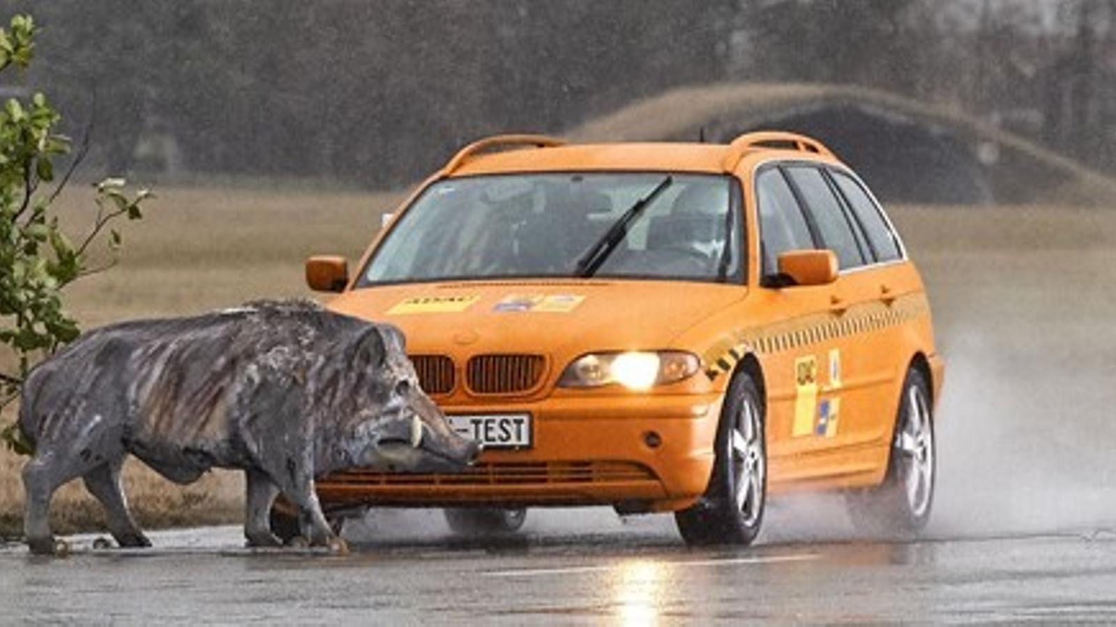 Així queda un cotxe en atropellar un senglar a 80 km/h