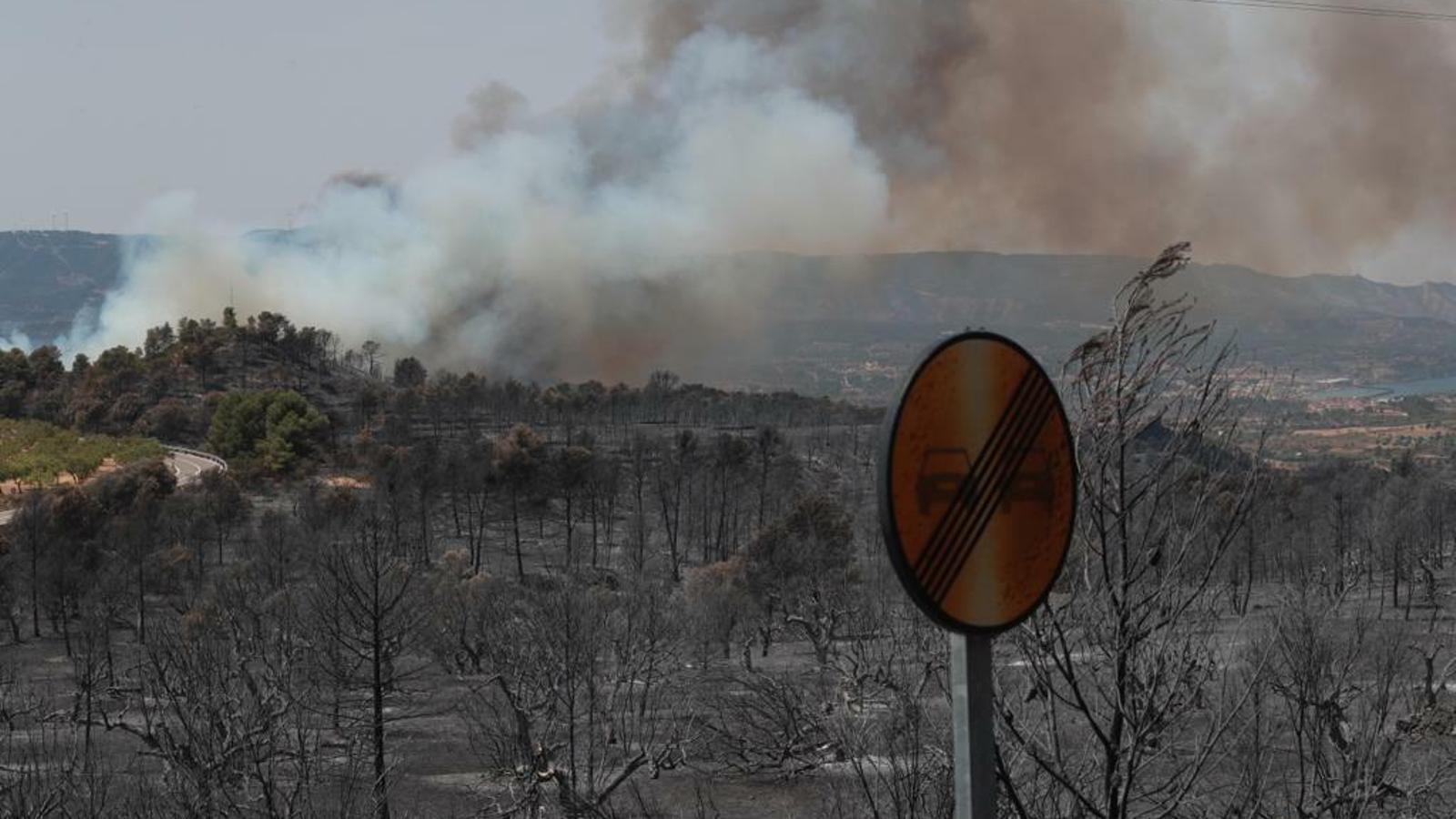 El foc més devastador de l'Ebre ja crema més de 6.000 hectàrees