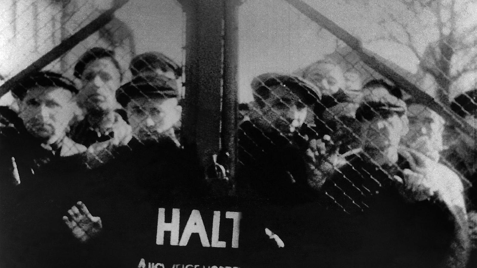 Alguns dels deportats d'Auschwitz-Birkenau rere la porta, observant l'arribada de les tropes soviètiques el 27 de gener del 1945.