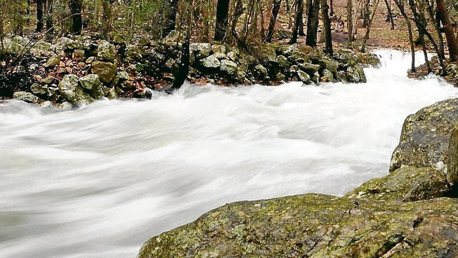 El Govern reservarà els excedents de les fonts Ufanes per garantir l'arribada d'aigua de bona qualitat a l'Albufera.