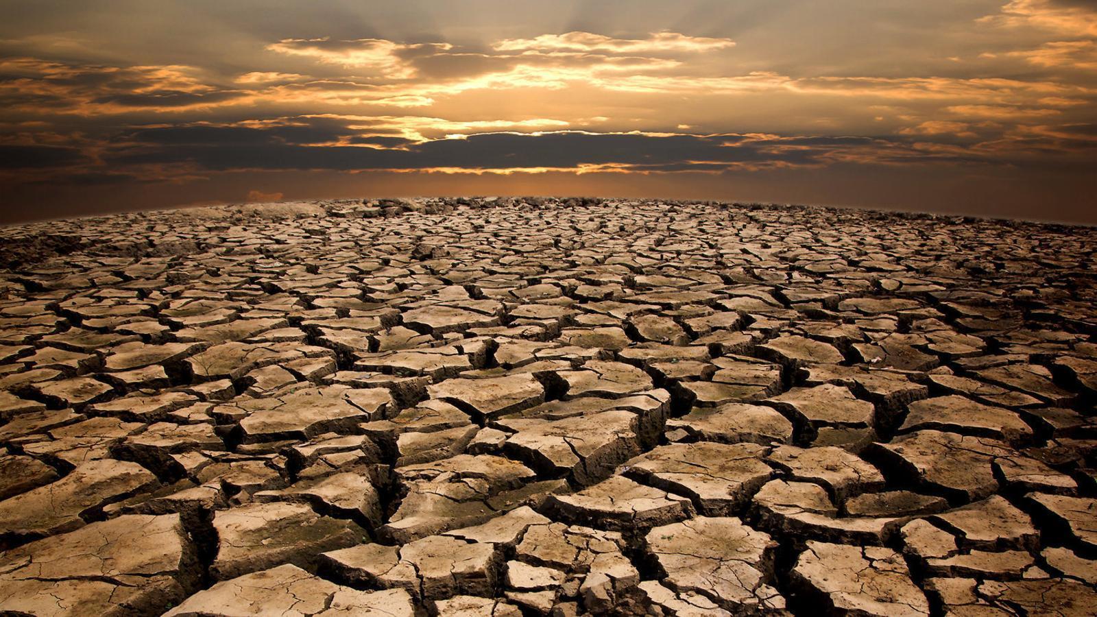 El canvi climàtic arriba al teu plat