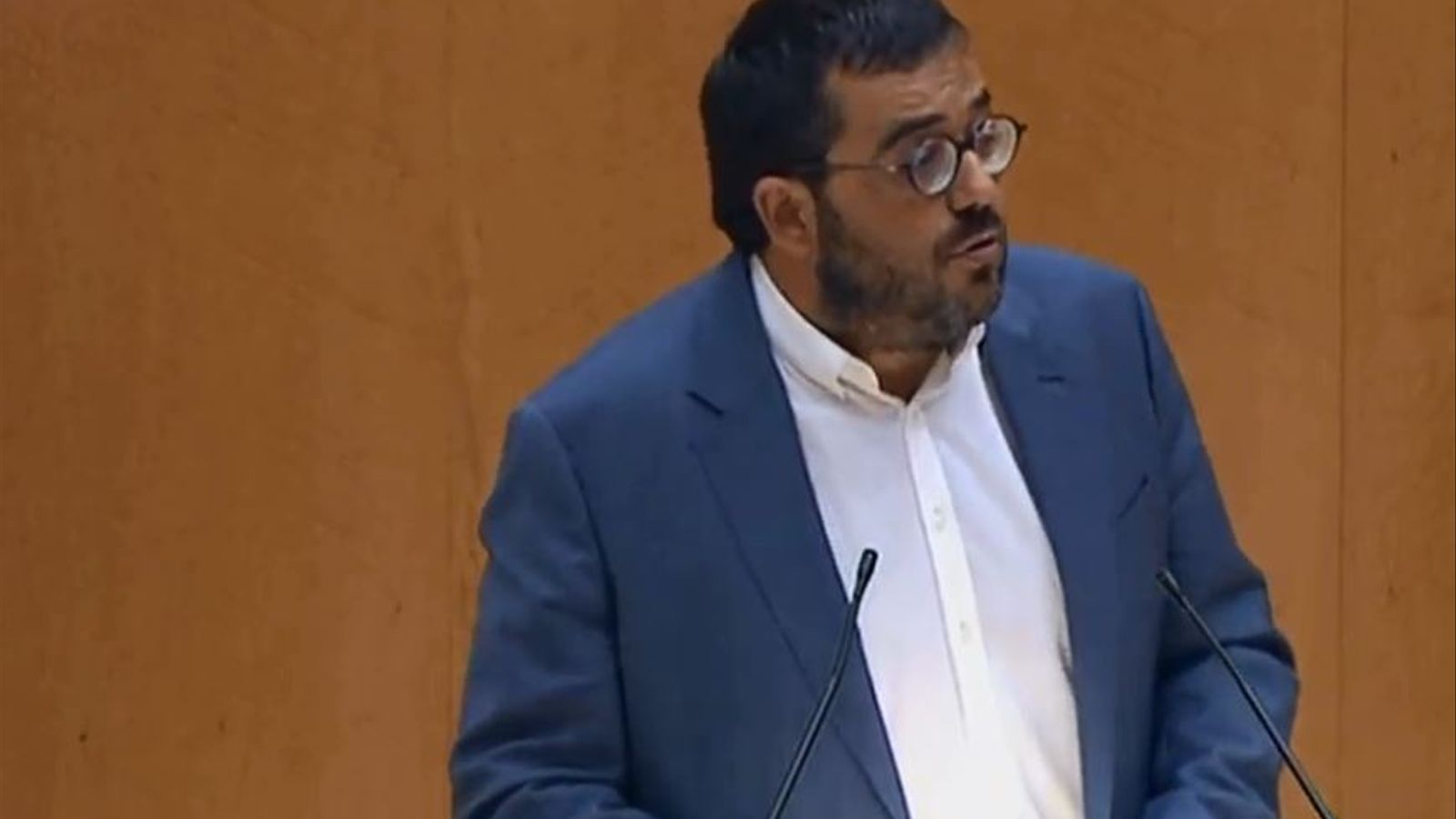 El senador de MÉS per Mallorca, Vicenç Vidal, durant la seva intervenció