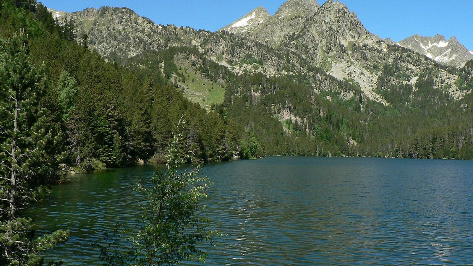 Natura i progrés,  un equilibri vital Fem Parc,  un projecte comú