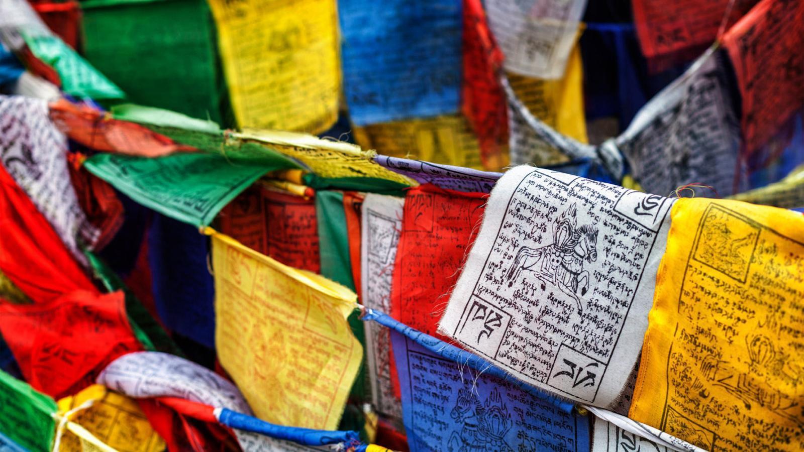 Budisme: actualitzacions disponibles