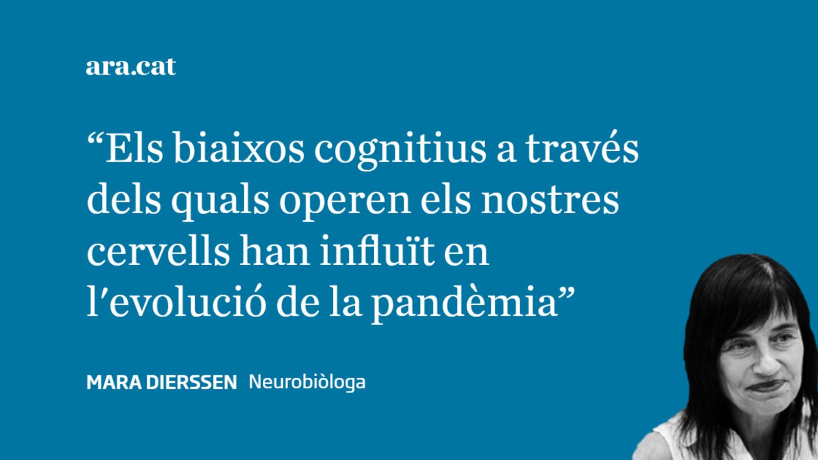 La pandèmia i el cervell (1)