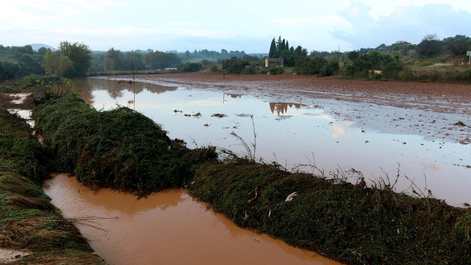 L'aigua ha inundat algunes parcel·les agrícoles i esbucat casetes i parets.