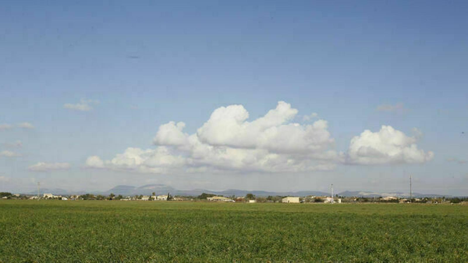 Vents fluixos que bufaran del sud i sud-oest a les Balears