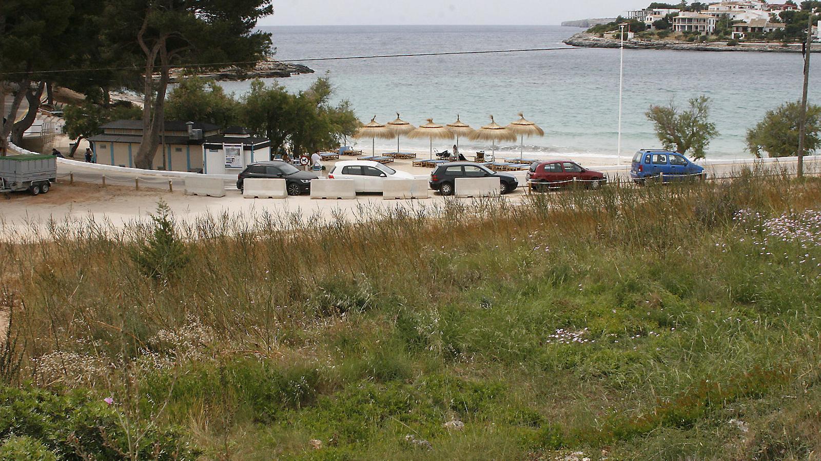 Vista parcial de la finca de 8.600 m2 classificada com a zona verda pública, només separada de la platja de l'Arenal per la carretera de la urbanització la Punta.