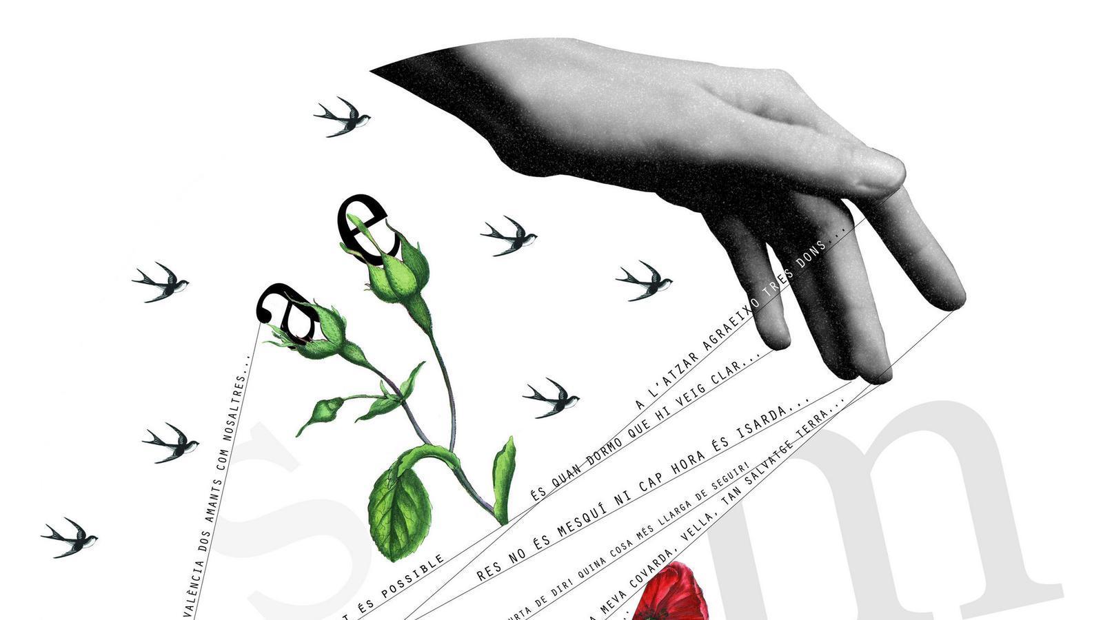 Els 10 Millors Versos De La Poesia Catalana