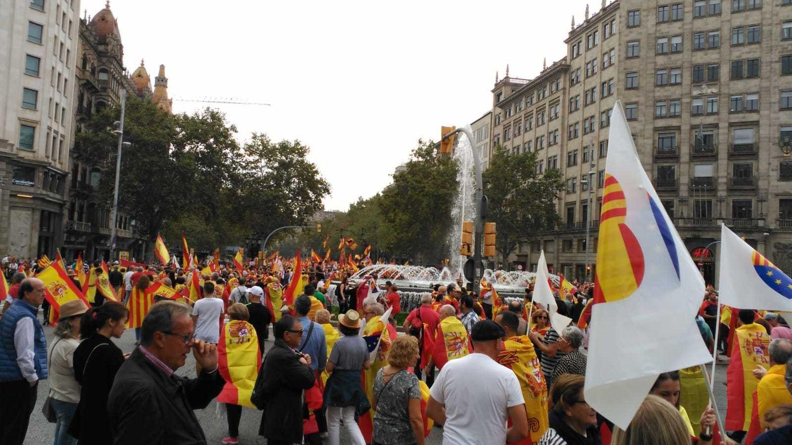 Banderes de Ciutadans, a la manifestació per la unitat d'Espanya