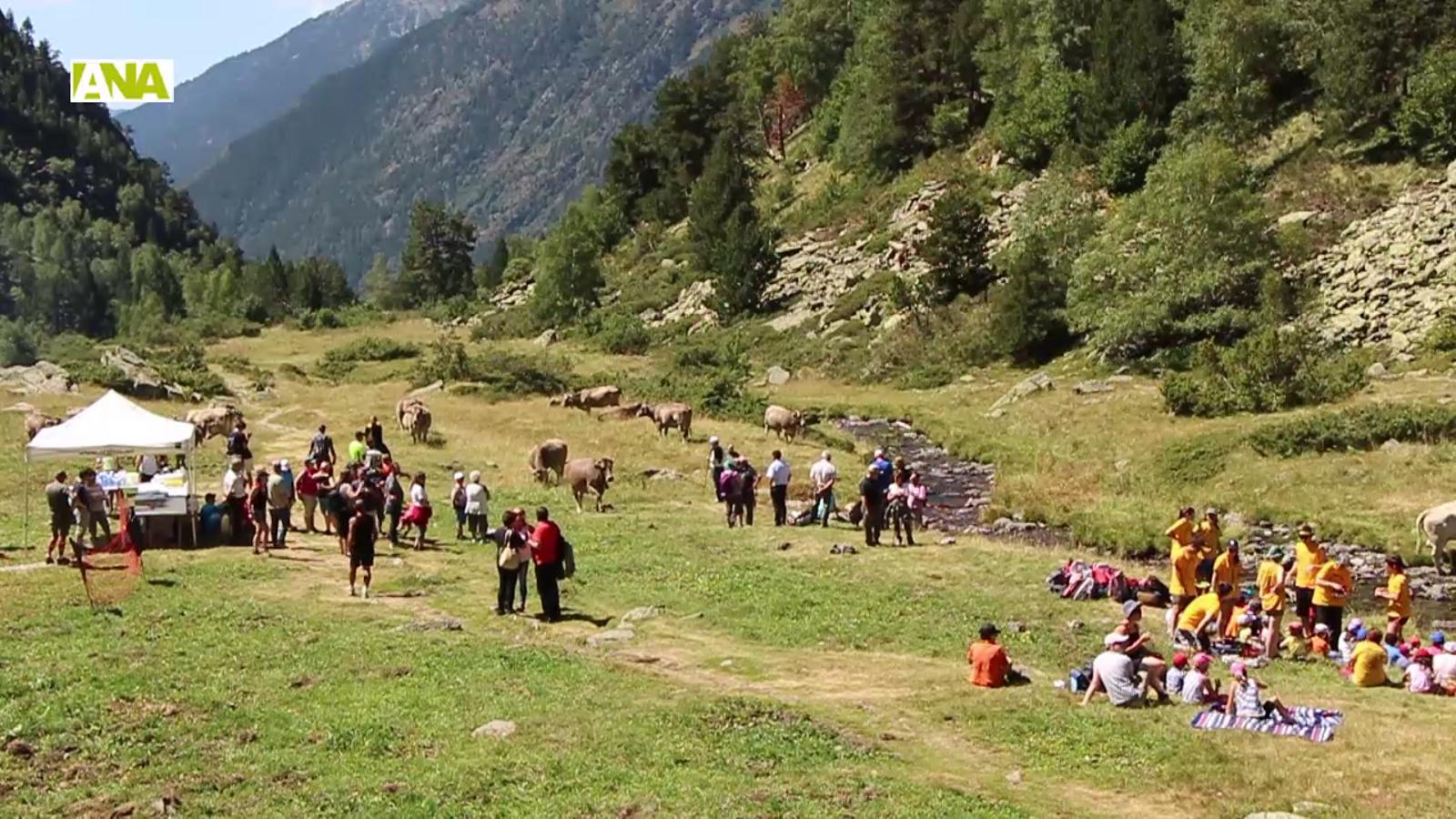 Benedicció del bestiar a la Rabassa d'Ordino