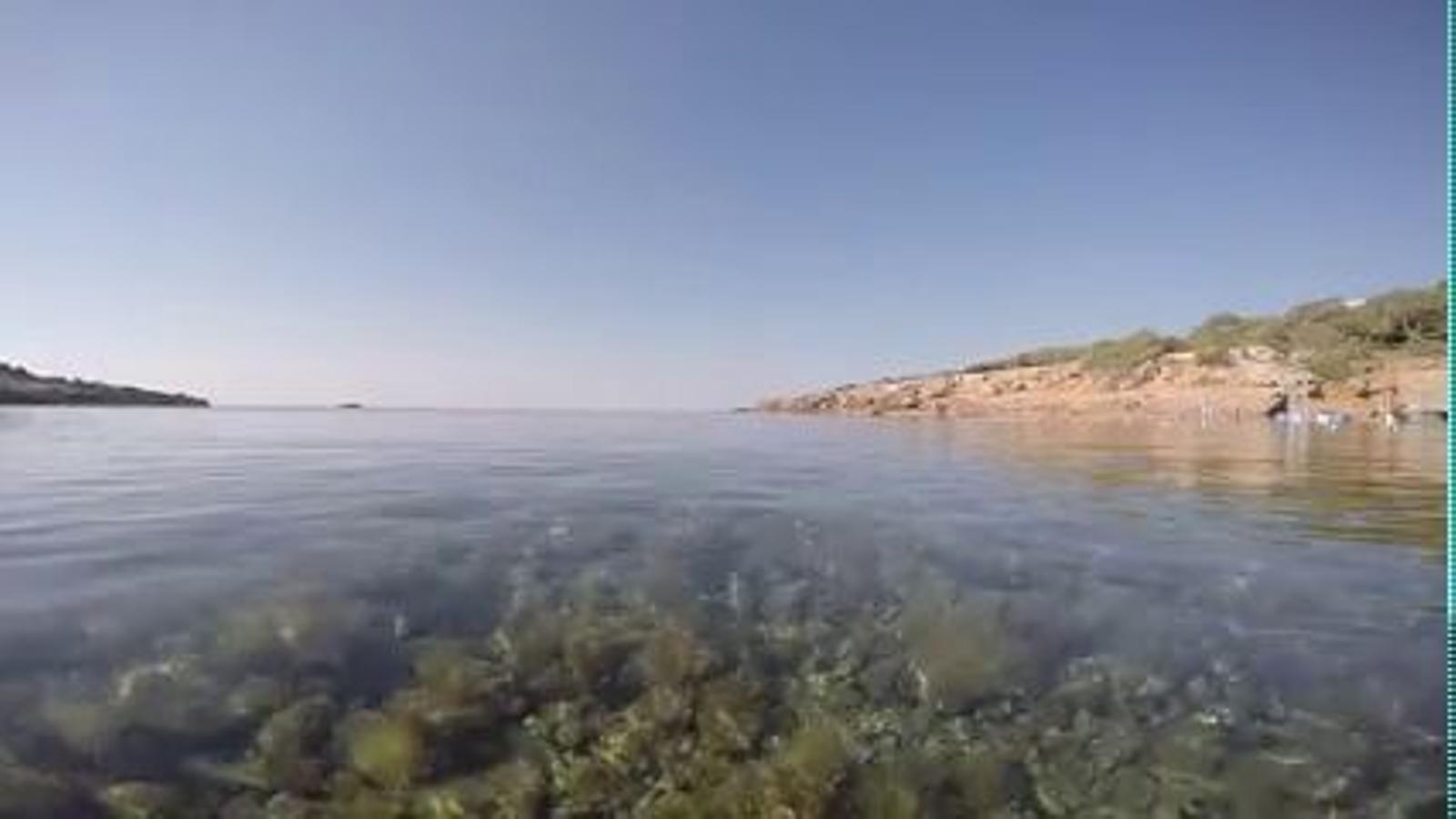 L'estat de l'aigua de la platja de s'Estanyol d'Eivissa després de l'event de Heineken