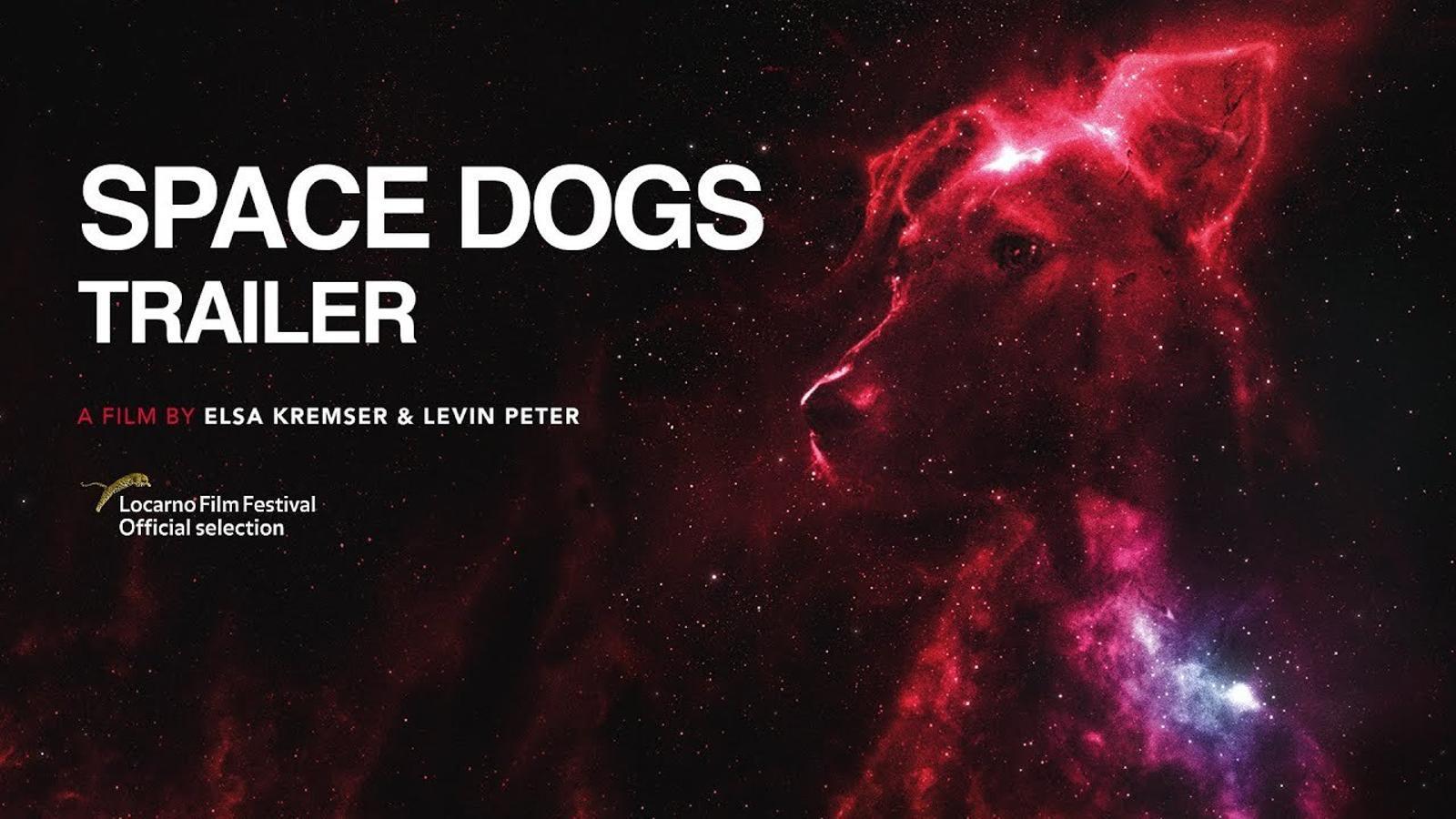 Tràiler del documental 'Space dogs'