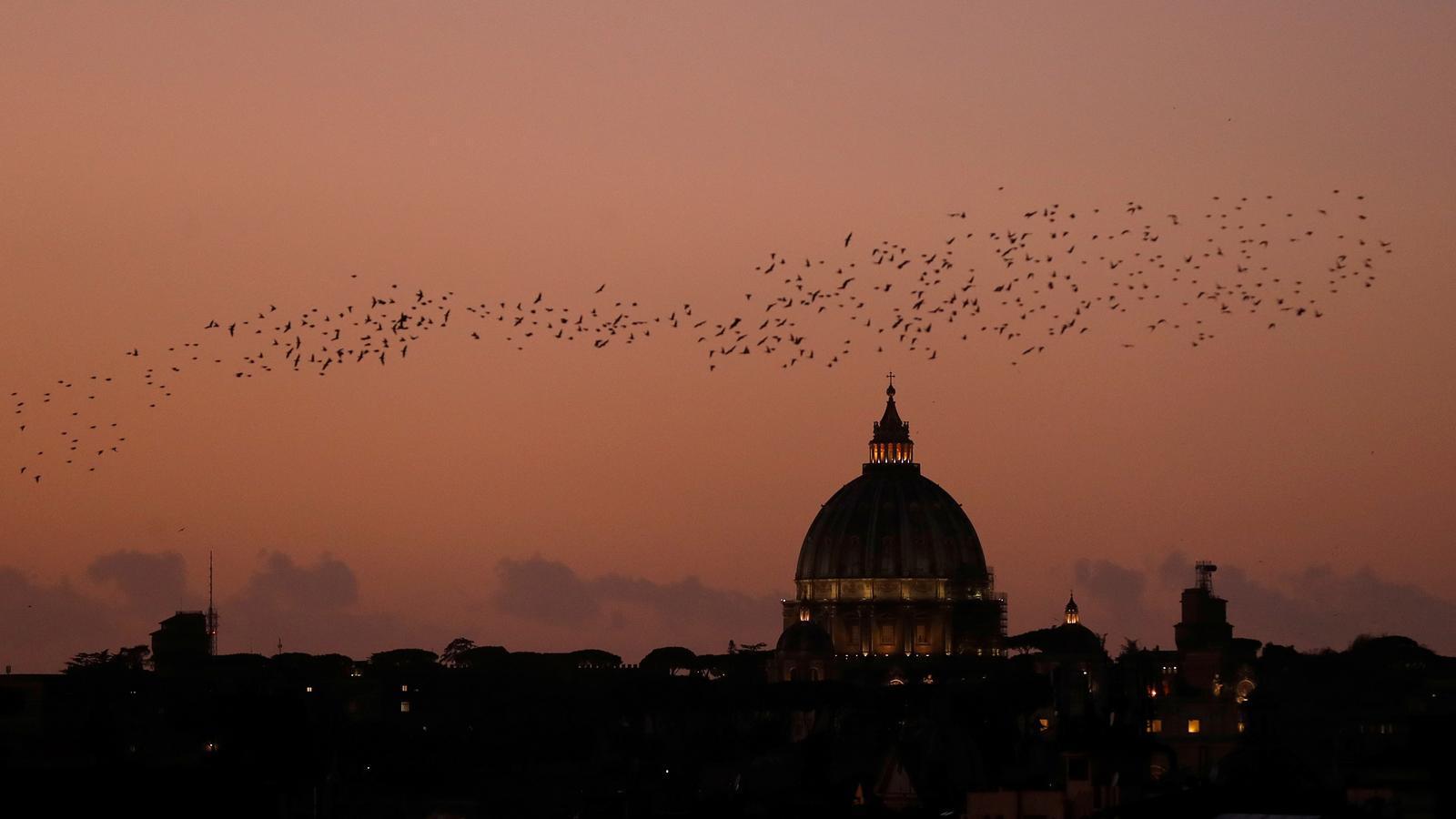 Un grup d'ocells vola per sobre la basílica de Sant Pere a Roma