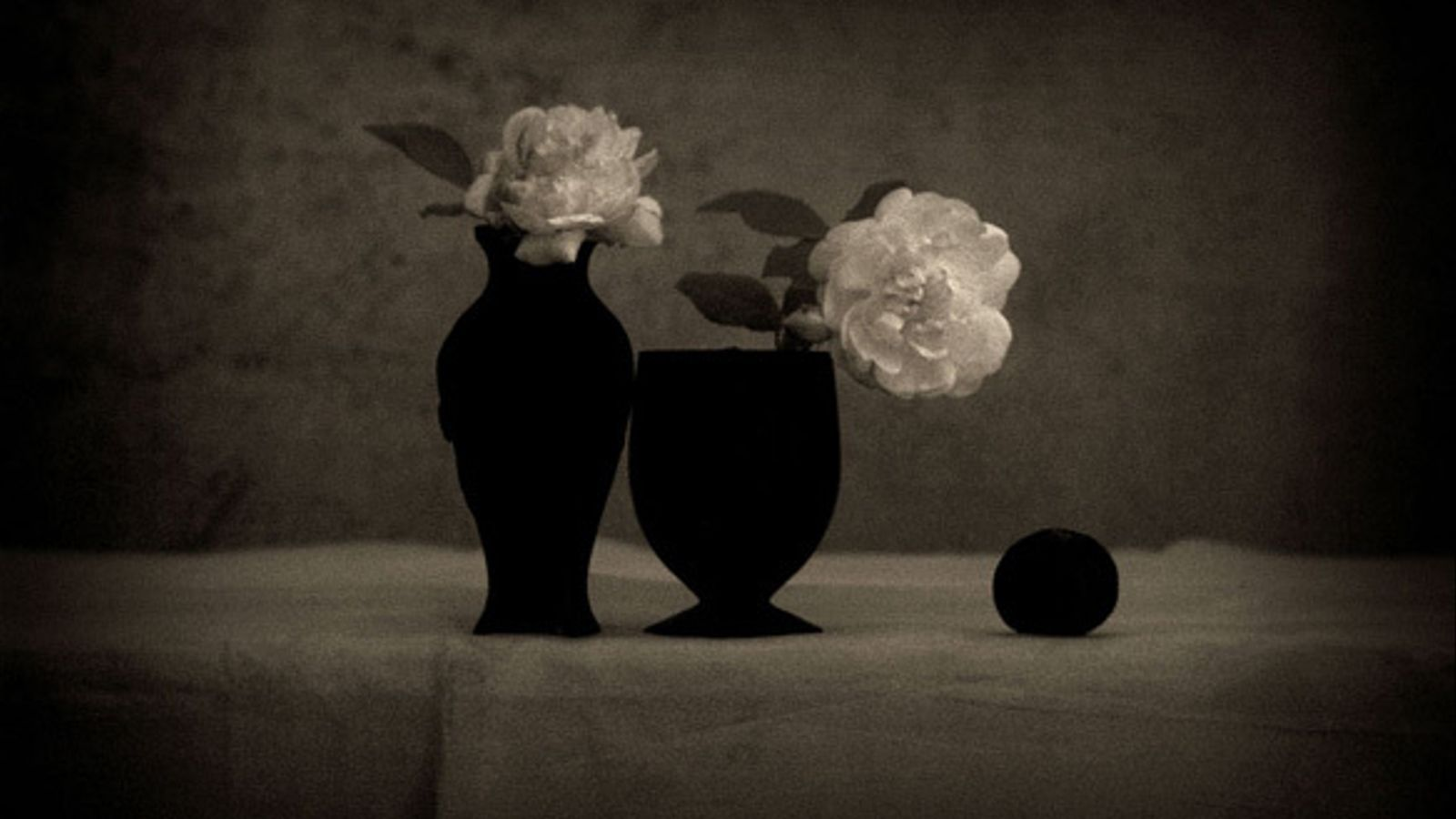 Fotografia de Toni Catany.