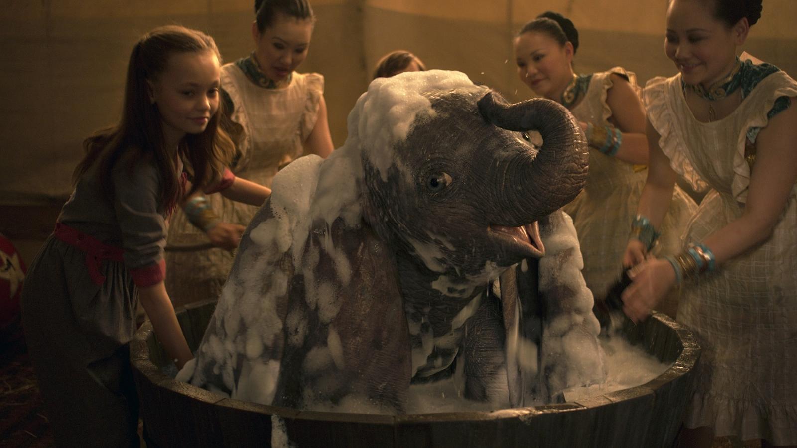 'Dumbo',