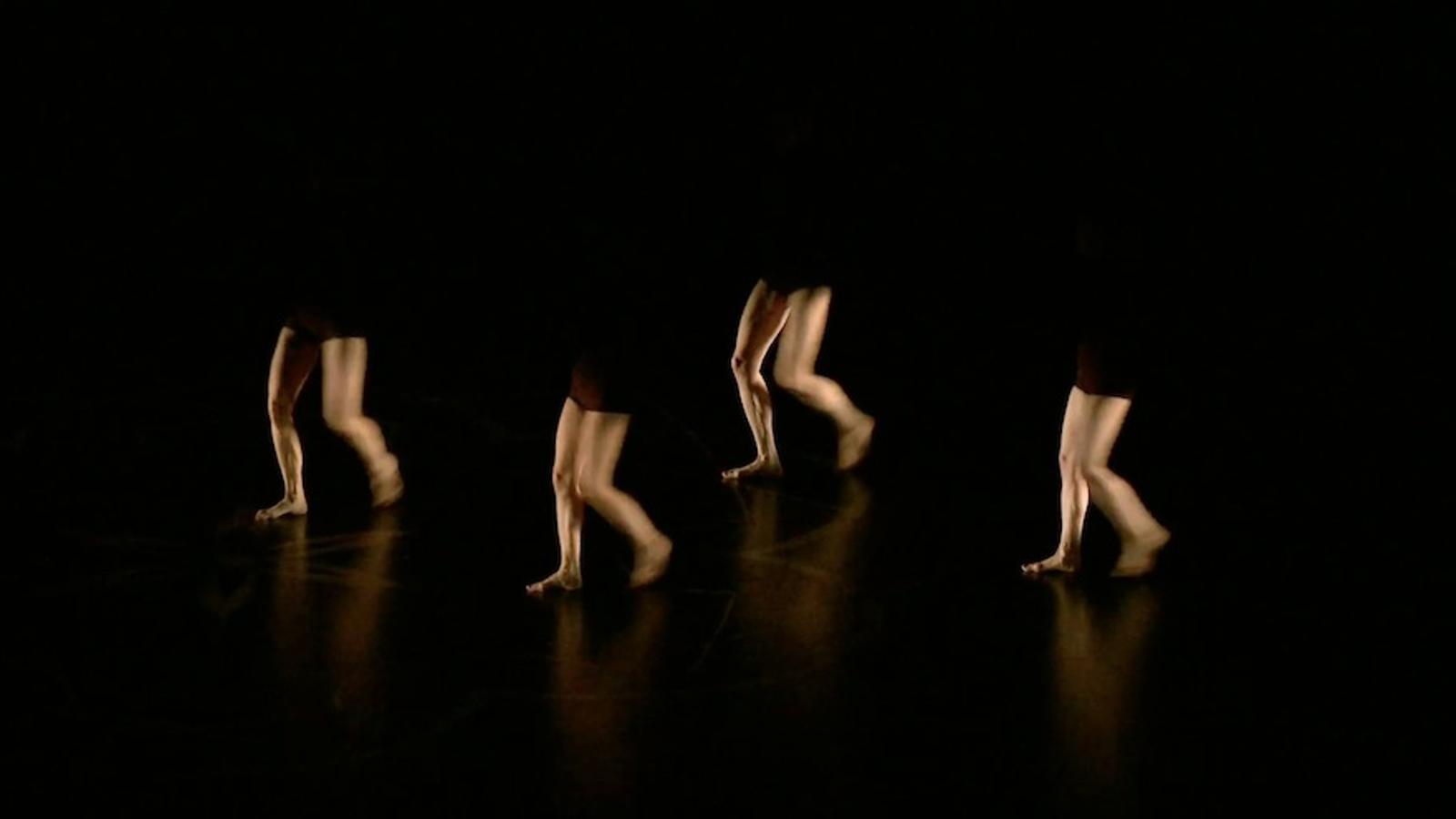'Octopus', espectacle de Philippe Decouflé al TNC