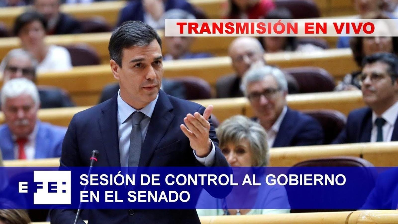 EN DIRECTE: Sánchez compareix al Senat