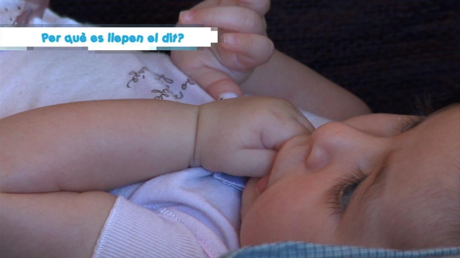 Criatures: Per què els nadons es llepen el dit?