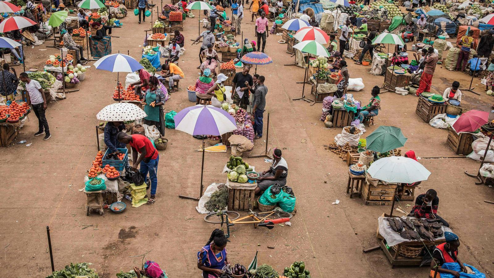 L'Àfrica espera l'onada del brot confiant en la prevenció