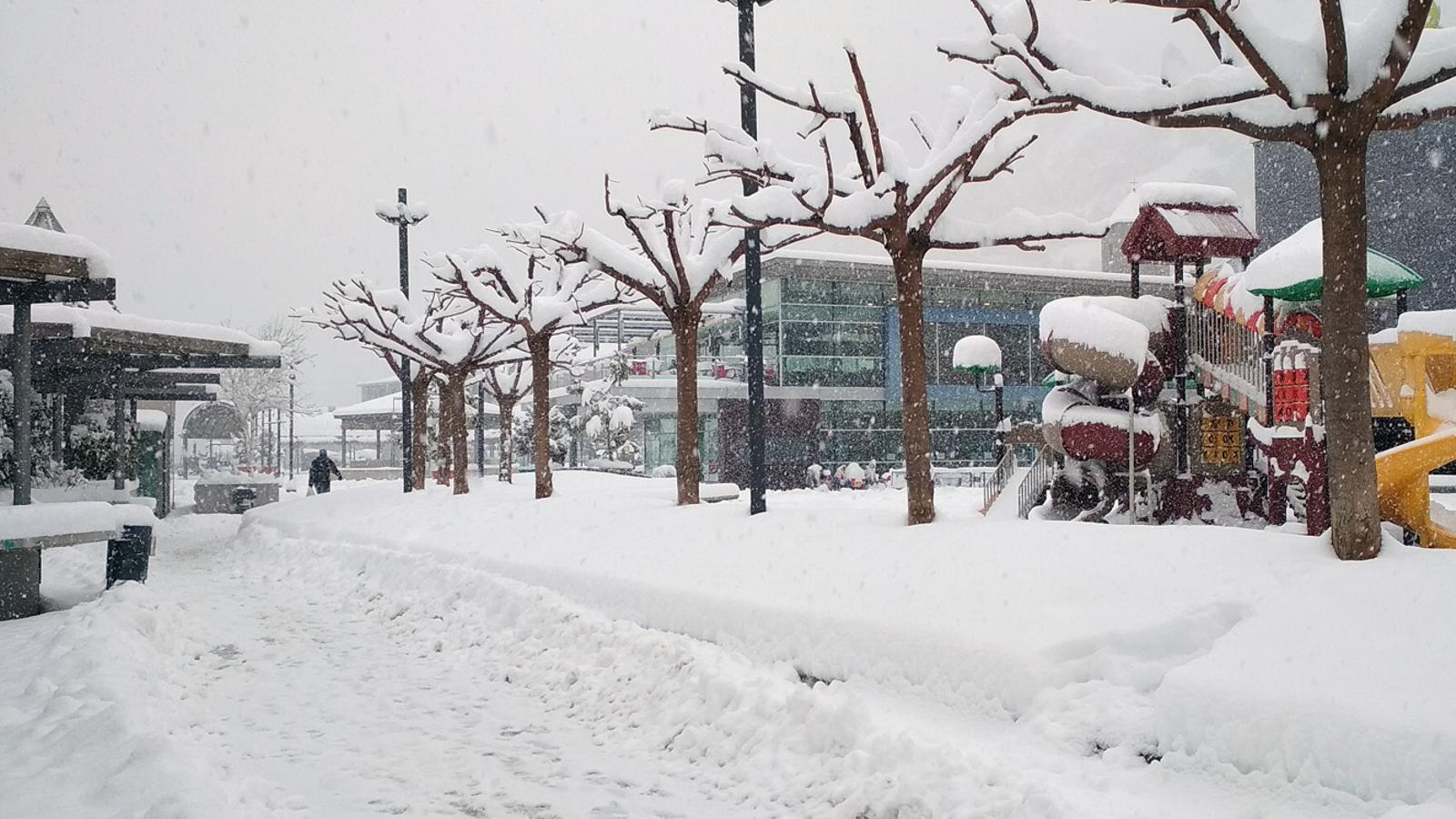 La nevada ha tenyit de blanc tot el país. / T. N. (ANA)