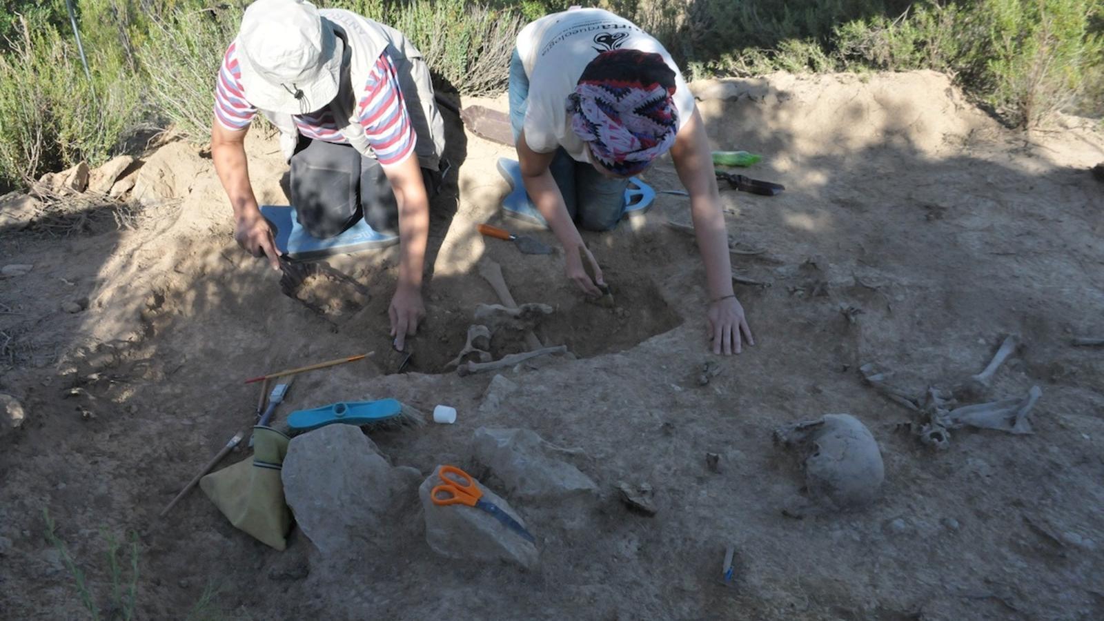 Els arqueòlegs durant la feina d'excavació al Cogul
