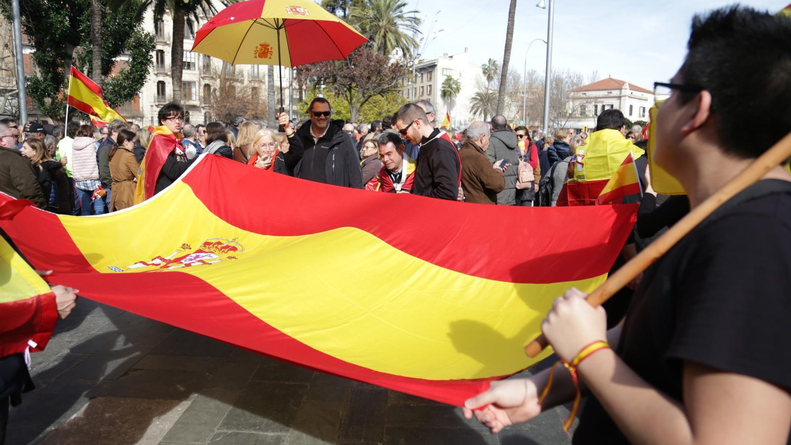 Imatges de la manifestació espanyolista a Palma