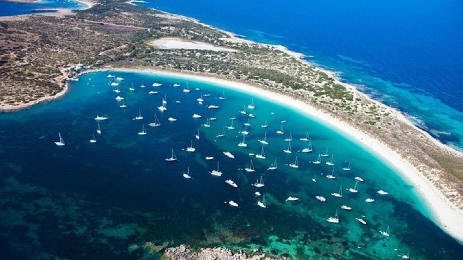 Formentera té una nova reserva on es regularà la pesca.