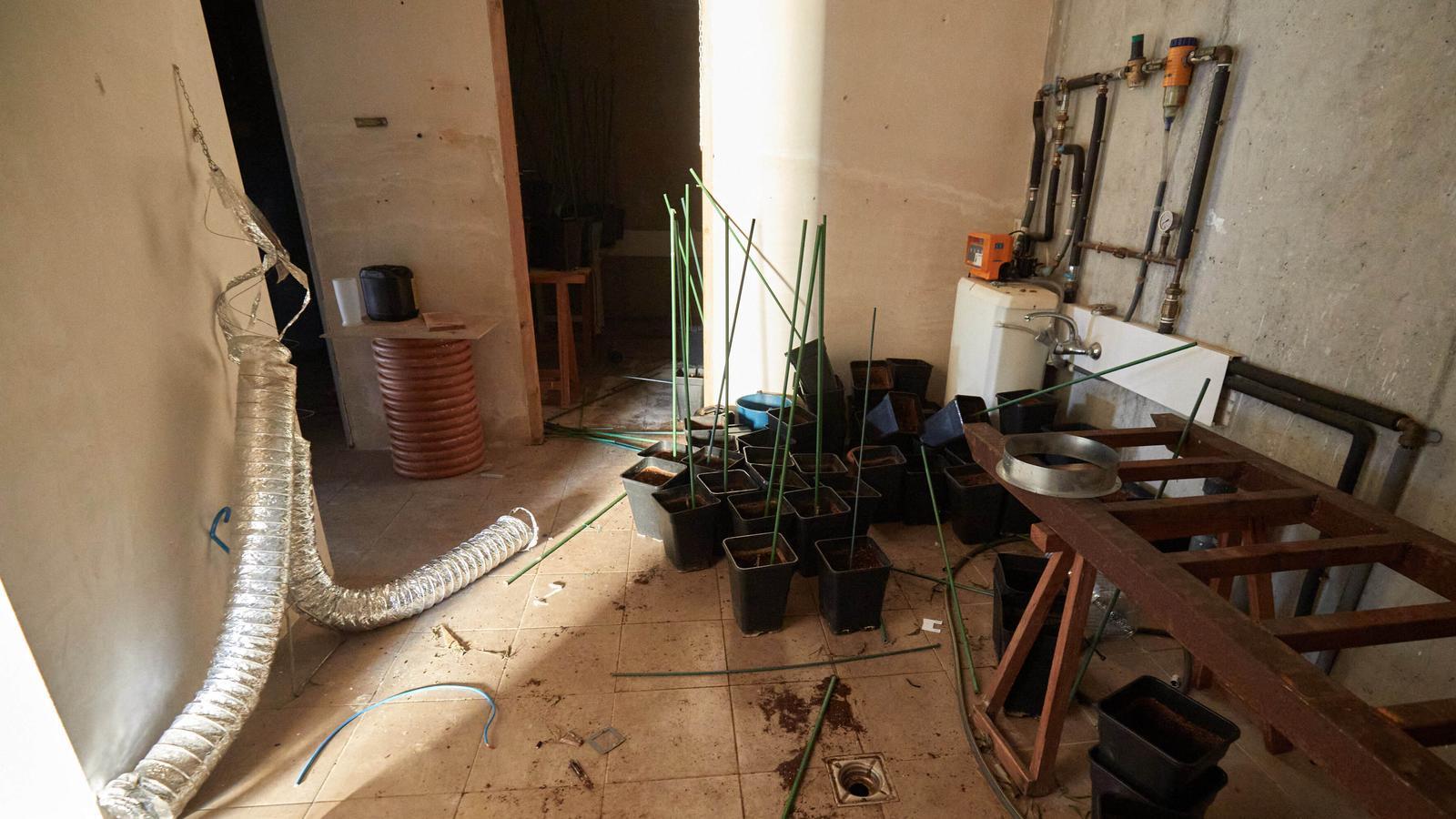 L'interior d'una casa ocupada per al cultiu de marihuana a Maçanet de la Selva / David Borrat