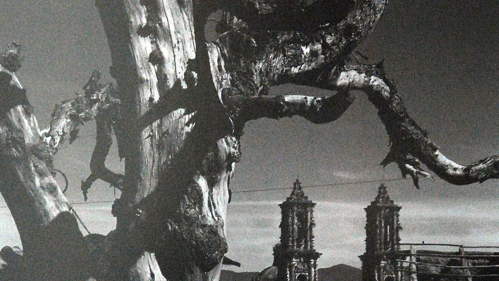 Fotografia realitzada per l'escriptor mexicà en una data indeterminada.