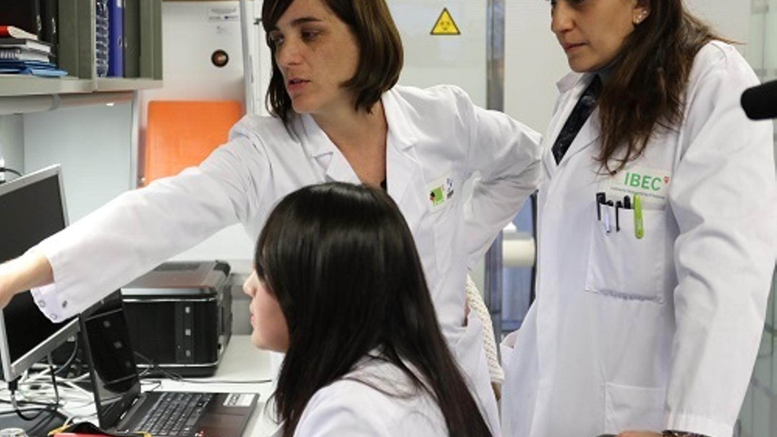 Treballadors dels laboratoris d'IBEC