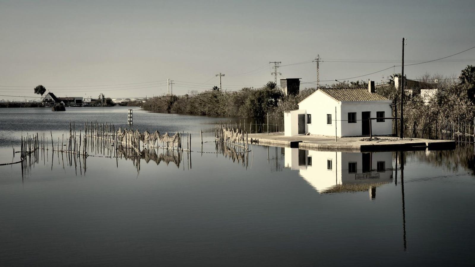 10 Per comprendre  (i pal·liar)  el canvi climàtic Llibres