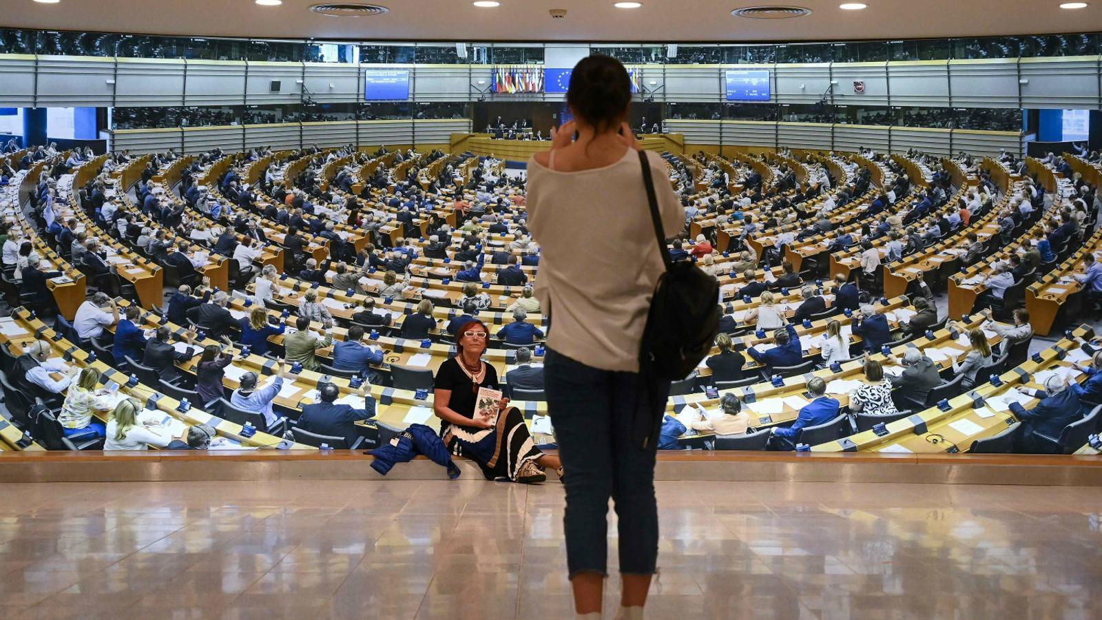 Les institucions europees són dels homes blancs