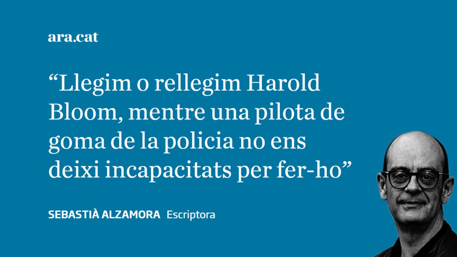 Harold Bloom en aquests dies