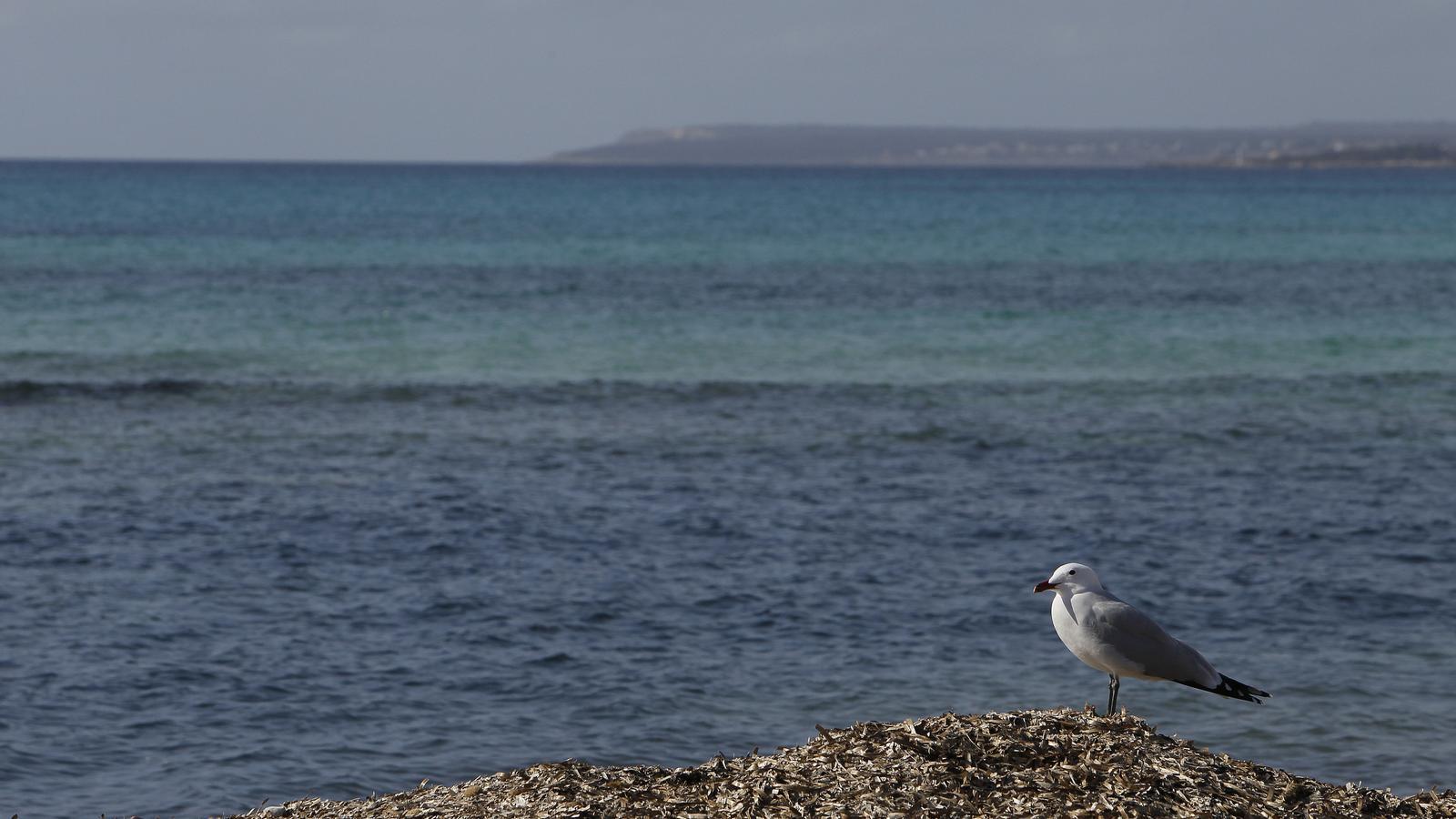 Les temperatures continuen en ascens a les Balears