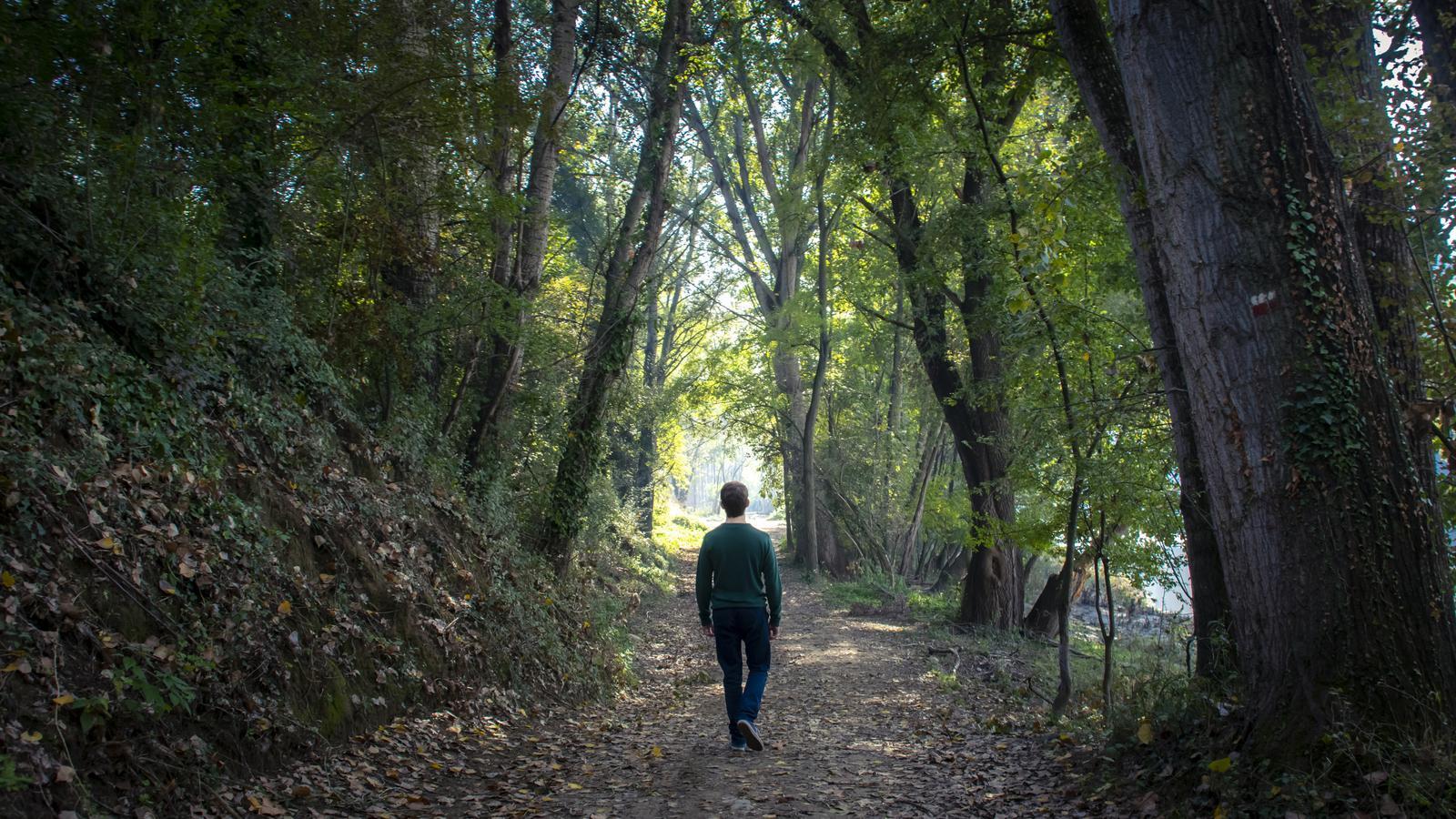 Un home caminant pel bosc en solitari