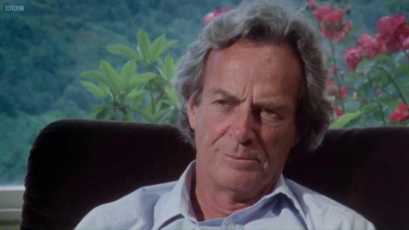 El fantàstic senyor Feynman