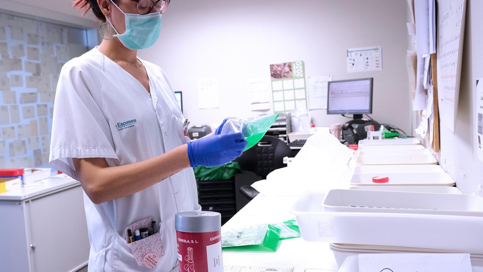 Sanitària classifica les mostres de covid-19 a Son Espases