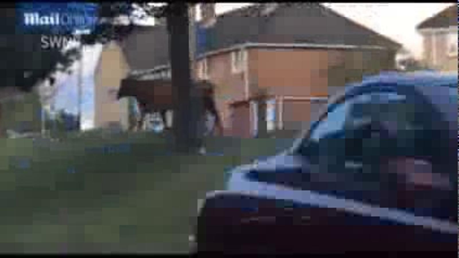 L'ensurt d'un conductor en trobar-se amb una vaca al mig de la carretera a l'est d'Anglaterra