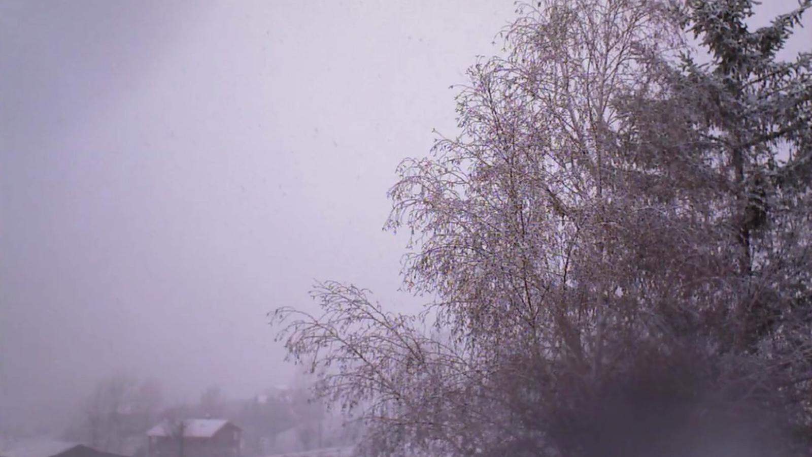 Una nevada comprimida en 22 segons