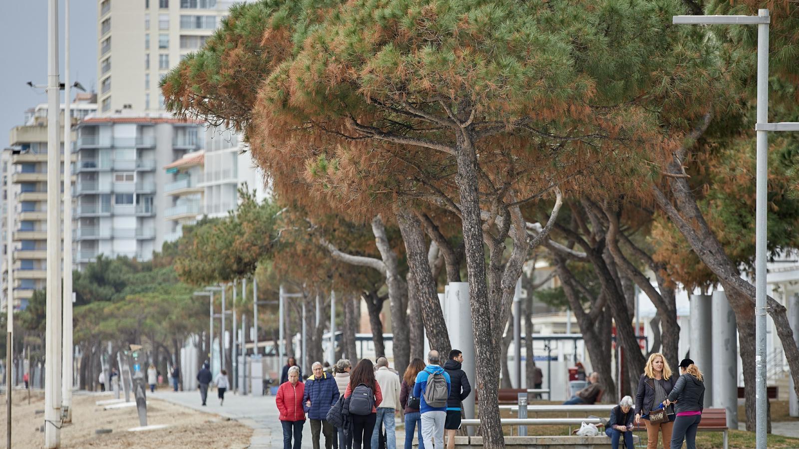 Desenes de persones passegen pel passeig marítim de Castell-Platja d'Aro